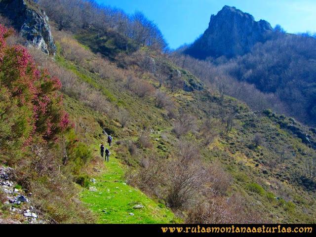 Ruta Requexón Valdunes, la Senda: Superadas la Revuelta Les Llampes, hacia la entrada al bosque