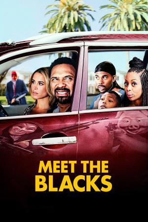 Uma Noite com a Família Blacks BDRip Dublado + Torrent 720p e 1080p
