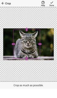 Aplikasi Menghapus Background Foto di Android