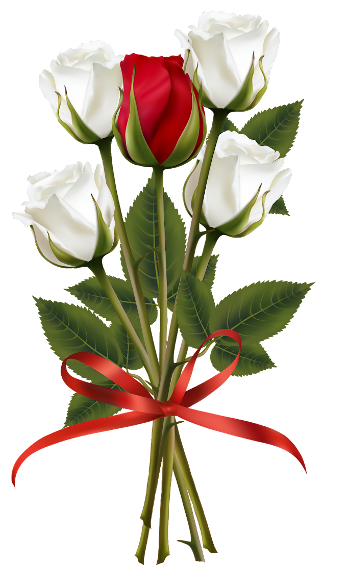 Flower bouquet Rose Red, White and Red Rose Bouquet, white and red roses bouquet illustration, flower Arranging, white, wedding png free png download