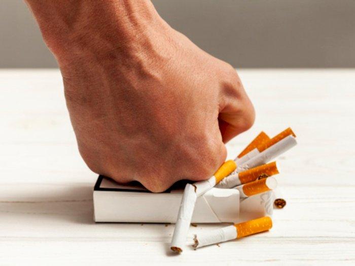 Manfaat penting berhemnti merokok /kompas lifestyle
