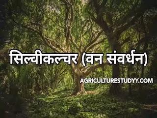 सिल्वीकल्चर (वन संवर्धन) Silviculture in hindi क्या है अर्थ, परिभाषा, उद्देश्य व विशेषताएं एवं वन संवर्धन प्रणाली का महत्व, क्षेत्र व विधियां