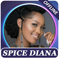 Spice Diana songs offline Apk free Download for Android