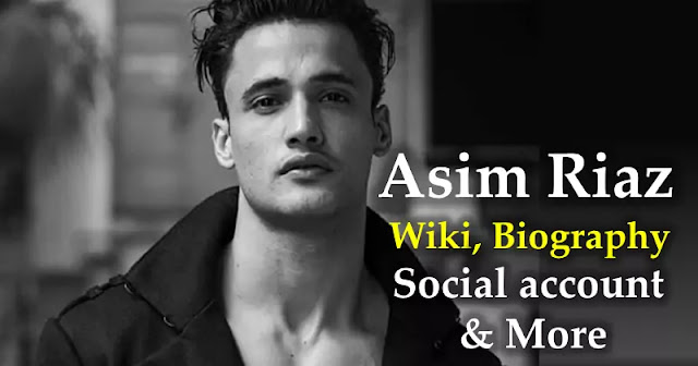 Asim Riaz Wiki, Biography, Social account & More