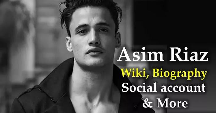 Asim Riaz Wiki, Biography, Social account & More