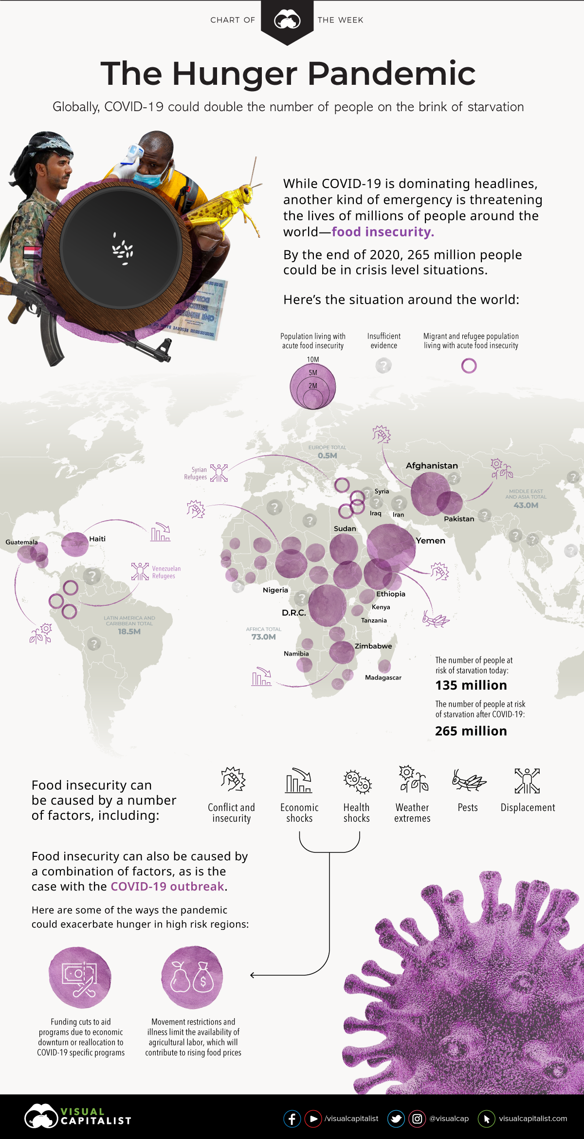 Hunger pandemic: The impact of COVID-19 on global food insecurity #infographic