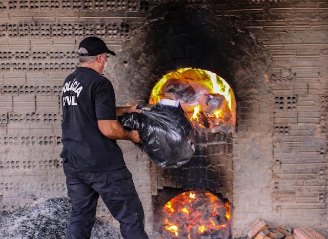 Denarc incinera mais de 800 quilos de entorpecentes em Porto Velho