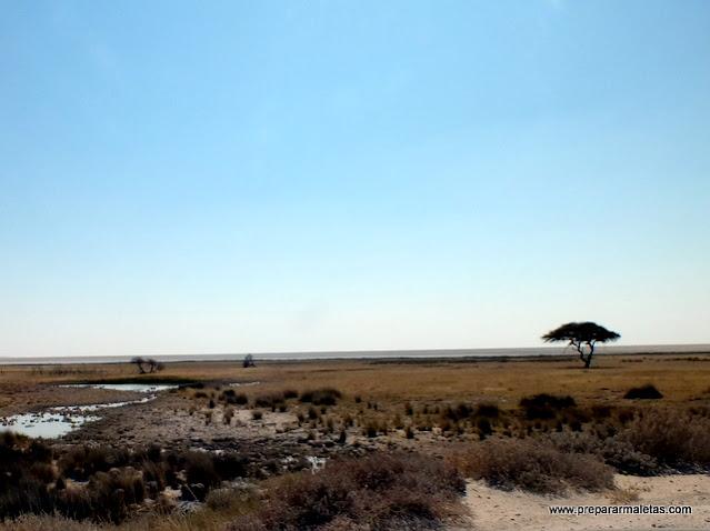 itinerario y consejos para viajar al sur de Africa