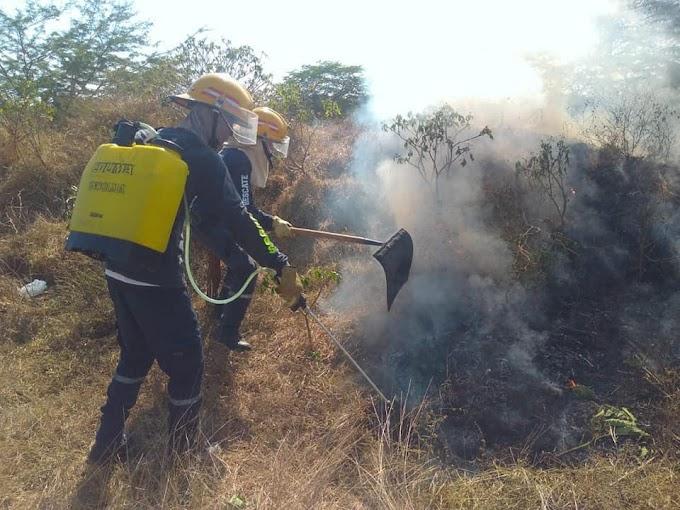 Corpamag firma convenio con el cuerpo de Bomberos de Nueva Granada para la prevención de incendios forestales
