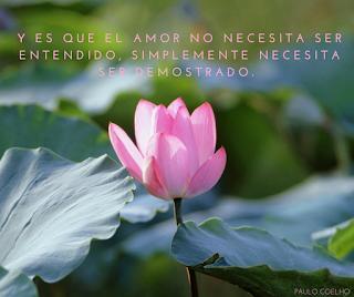 Y es que el amor no necesita ser entendido .Simplemente necesita ser demostrado.