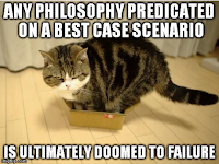 Maru meme: Any philosophy predicated on a best case scenario is ultimately doomed to failure
