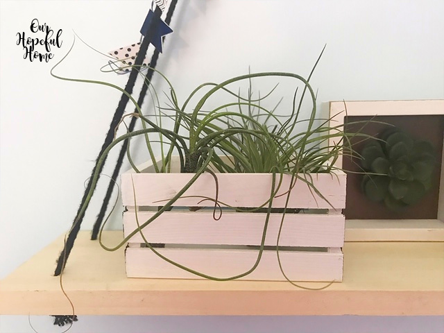 white painted mini crate air plant container cacti