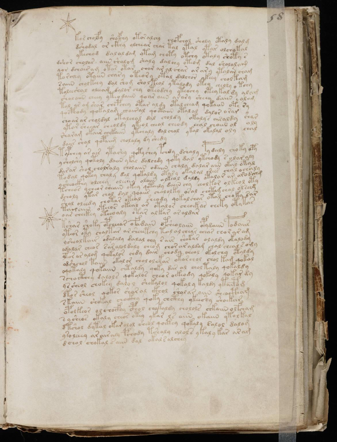 manuscrito113