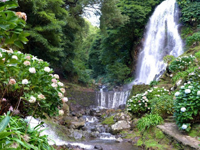 Nature Waterfall vivo Mobile hd wallpapers