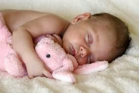 foto bayi lagi tidur lucu