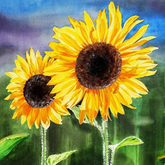 Цветы и цветочные натюрморты акварелью. Irina Sztukowski 29
