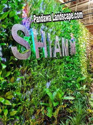 Tukang vertikal garden surabaya