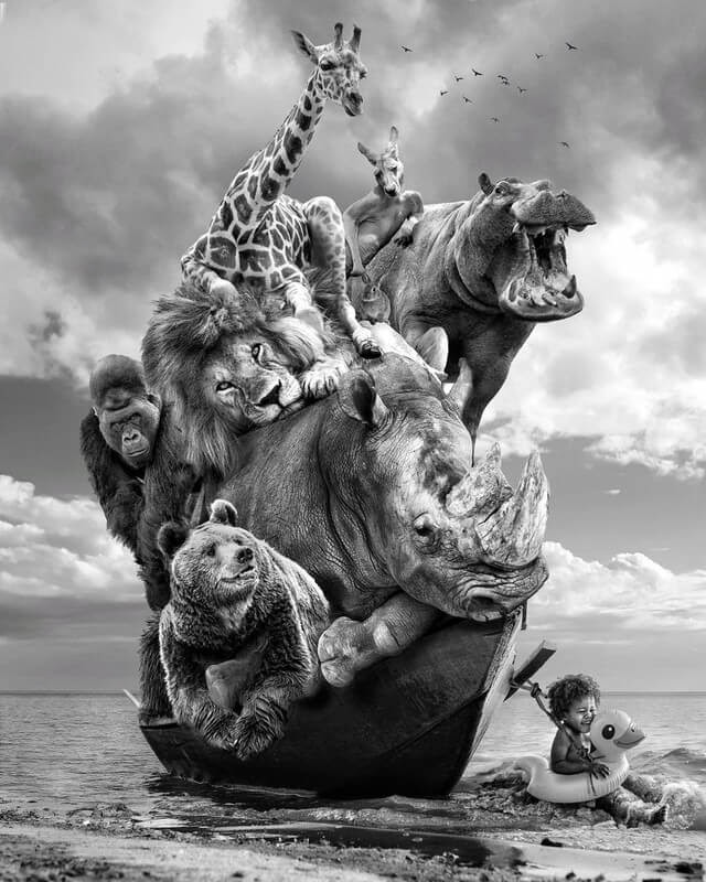13-Let-s-care-Marcel-van-Luit-Digital-Art-Animals-Photos-www-designstack-co
