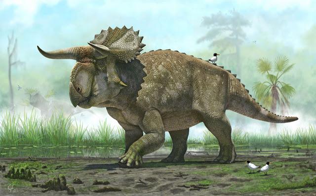 ديناصور ترايسيراتوبس