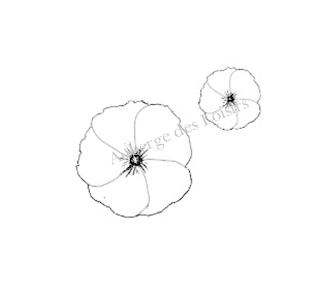 http://www.aubergedesloisirs.com/tampons-non-montes/2565-duo-fleurs.html