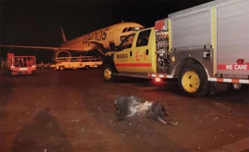 rudal houthi serang bandara arab saudi abha