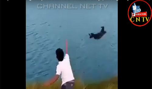 VIRAL : Sebuah capture dari video yang beredar di youtube. Seorang pemuda melempar anak anjing sebagai umpan buaya.  Gambar dari Youtube
