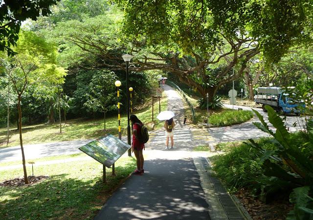 Na szlaku Southern Ridges Walk
