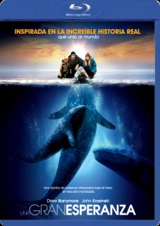Una Gran Esperanza (2012) | 3gp/Mp4/DVDRip Latino HD Mega