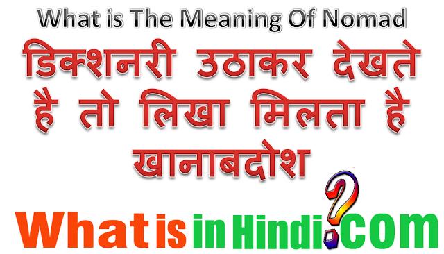 nomadic meaning in hindi