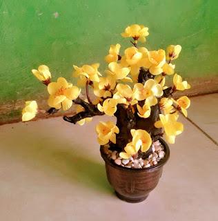 Gambar Bunga Bonsai Anggrek Kuning Plastik