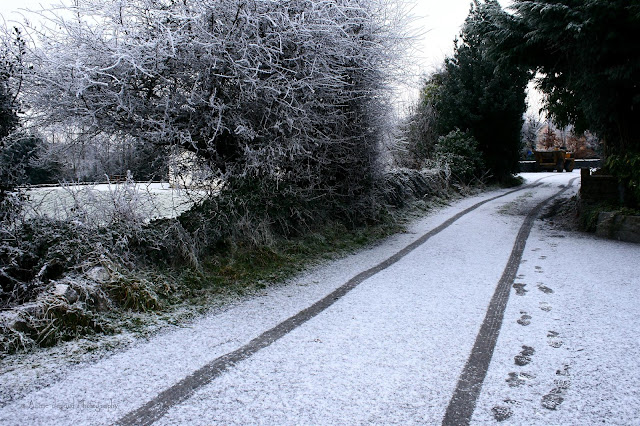 frost and light snow in Oughterard
