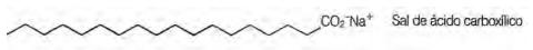 A figura a seguir representa a estrutura de uma molécula de sabão.