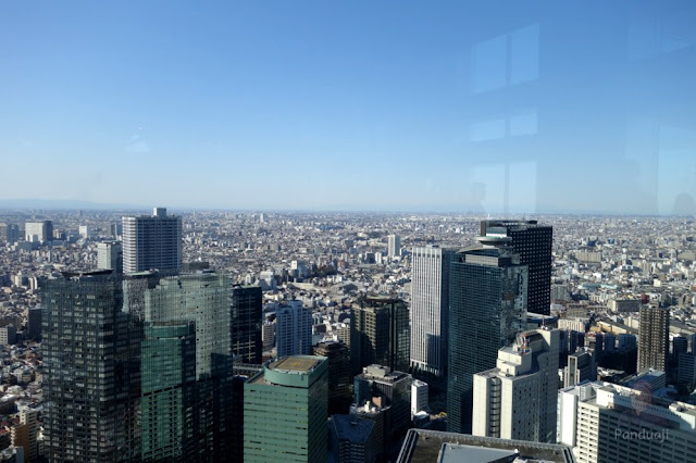View from Tokyo Metropolitan Goverment Building