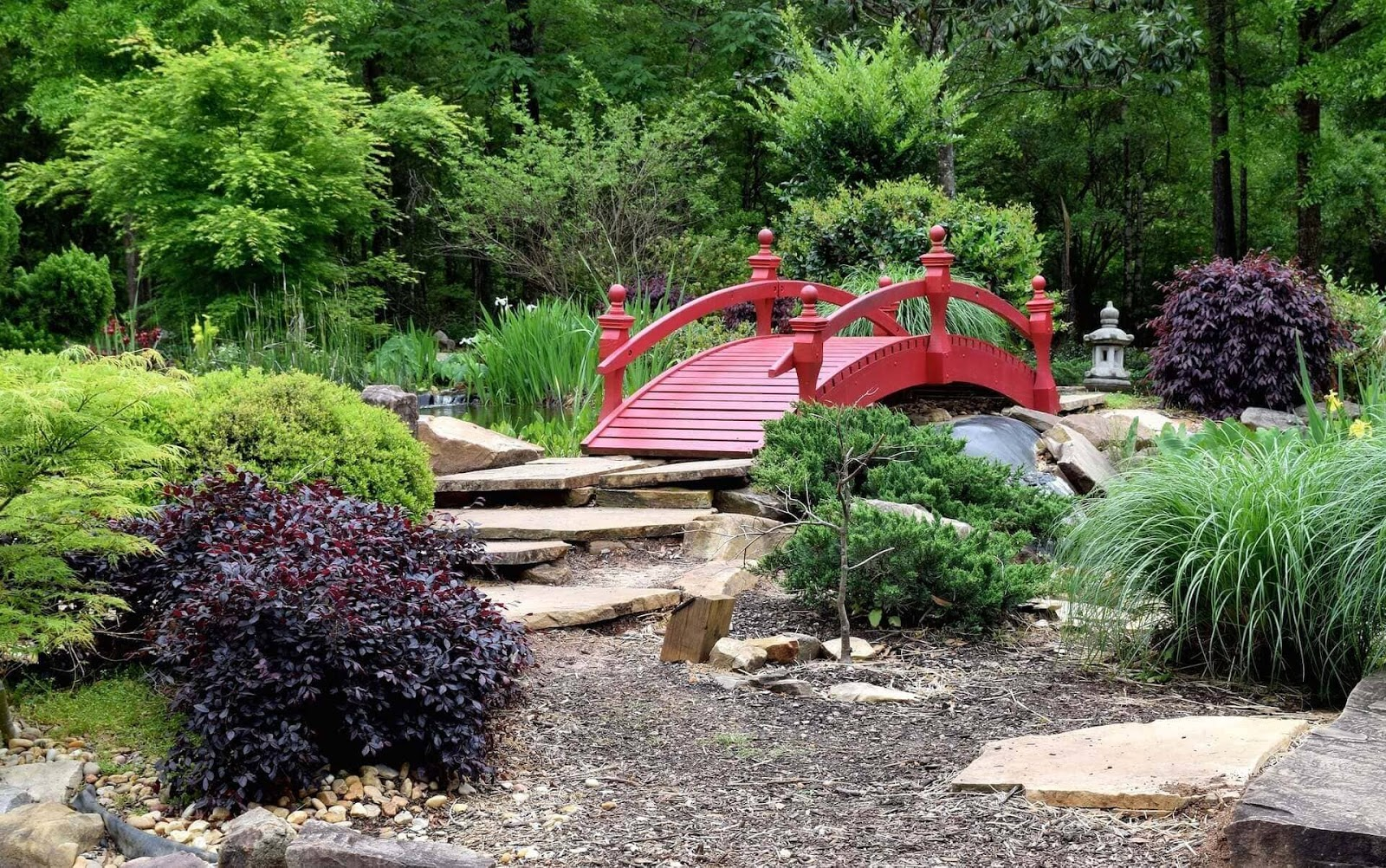 6 steps to an Asian garden design for small and large spaces