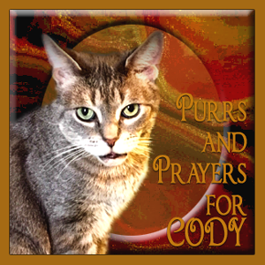 Purr for Cody