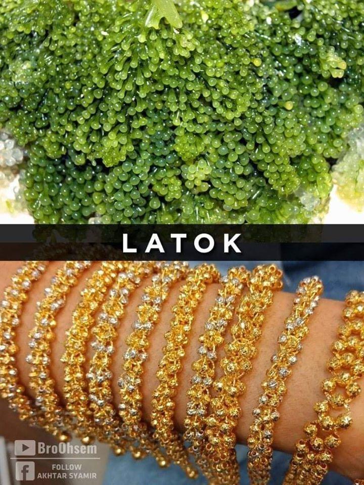 Gelang Emas Latok