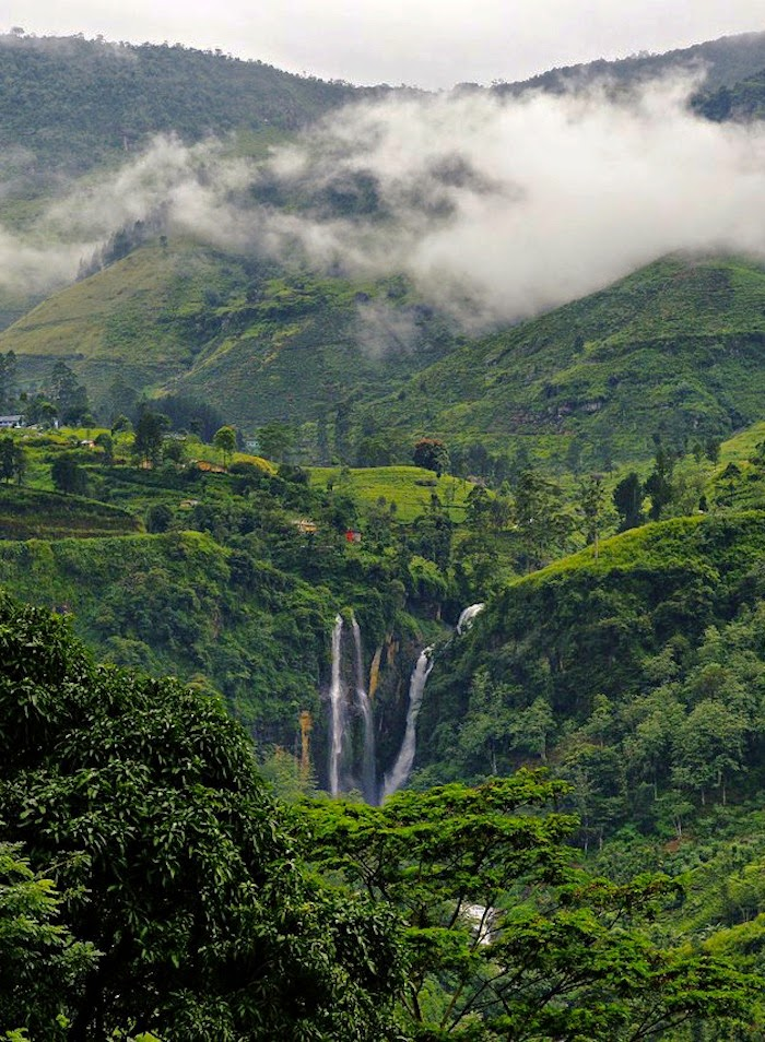 NUWARA ELIYA CITY 10 Places Not to Miss in Srilanka
