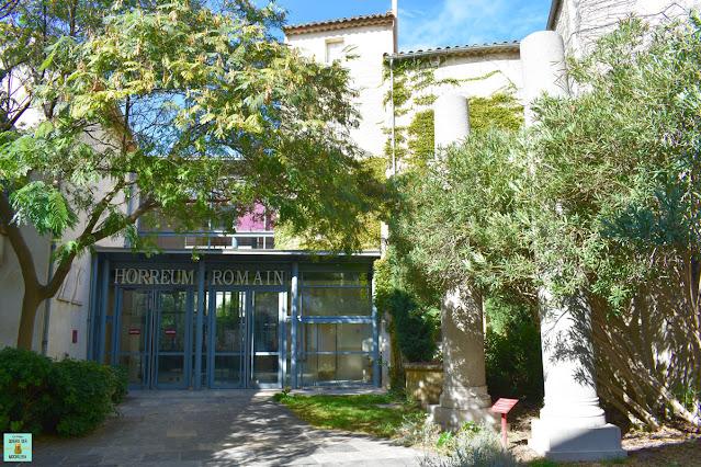 Horreum Romano en Narbonne