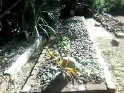 Makam Kyai Raden Santri Keturunan Sunan Kalijaga