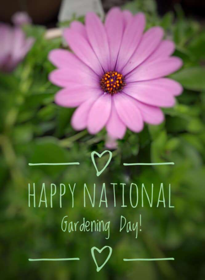 National Gardening Day Wishes Lovely Pics