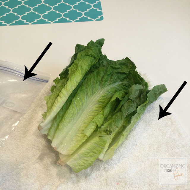 Keep Lettuce fresher, longer