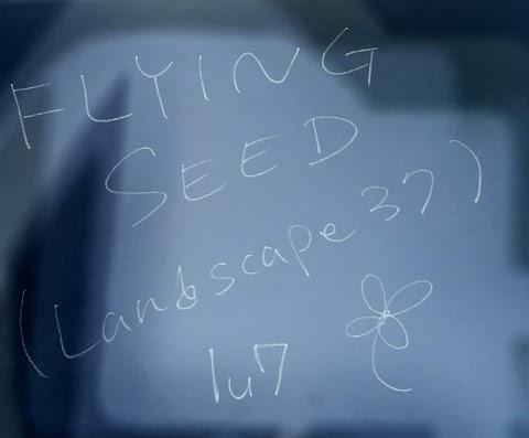 FlyingSeed(Landscape37)動画up!!