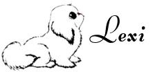 Lexi's signature