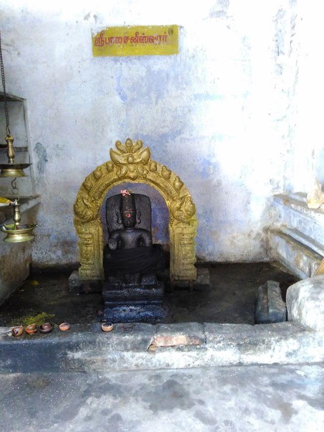 Lord Bala Shani Shrine