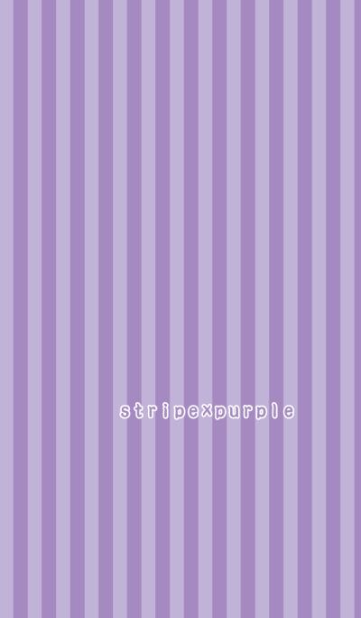 stripe*purple