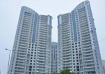Flats for rent in DLF Belaire Gurgaon