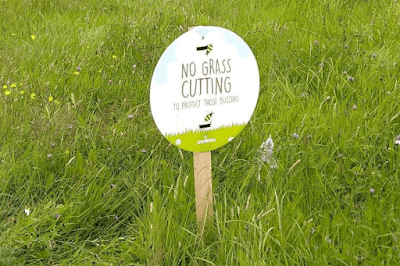 No Grass Cutting to Protect Those Buzzing