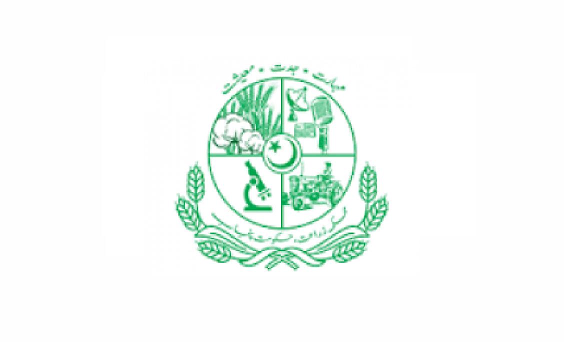 Agriculture Department Punjab Jobs 2021