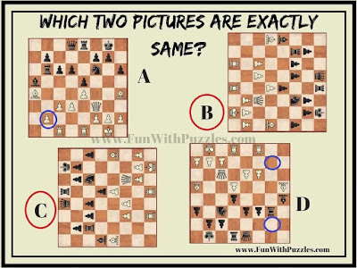 Spot the Same Pictures: Answer