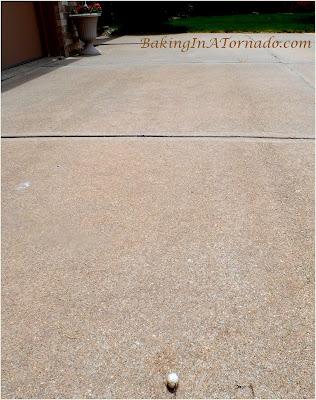 Who left their egg on my driveway? | www.BakingInATornado.com | #nature